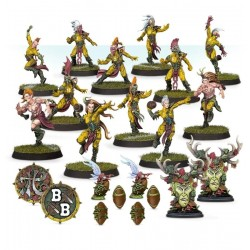 Blood Bowl: The Athelorn Avengers