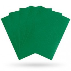 Matte Green (100 Sleeves) - Dragon Shield Standard Sleeves