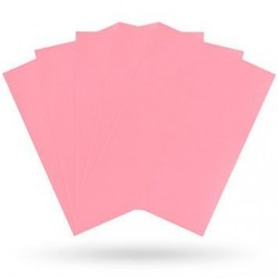 Matte Pink (100 Sleeves) - Dragon Shield Standard Sleeves