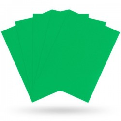Matte Apple Green (100 Sleeves) - Dragon Shield Standard Sleeves