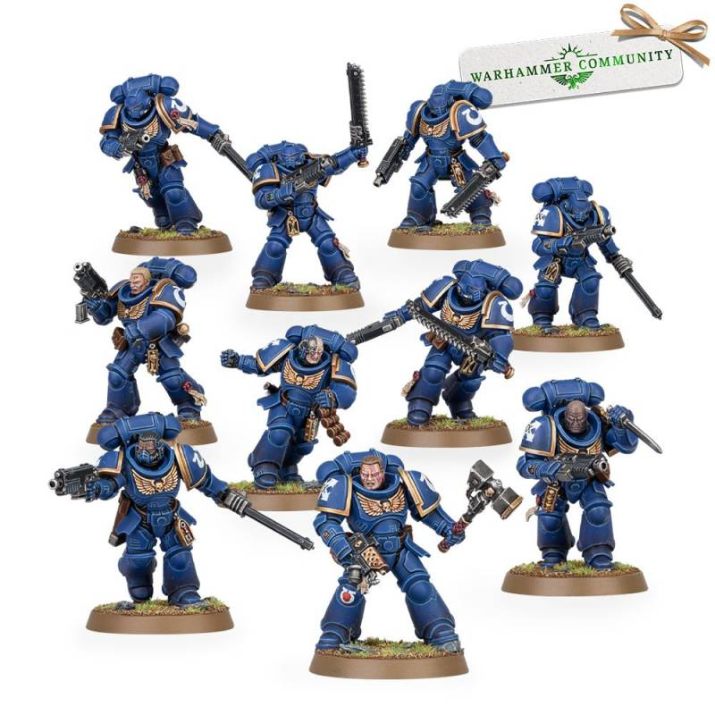 Freeborn Domari Squad
