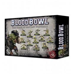 Scarcrag Snivellers Blood Bowl Team