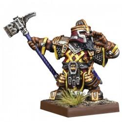 Dwarf Support Pack: Shieldbreaker  (Ingles)